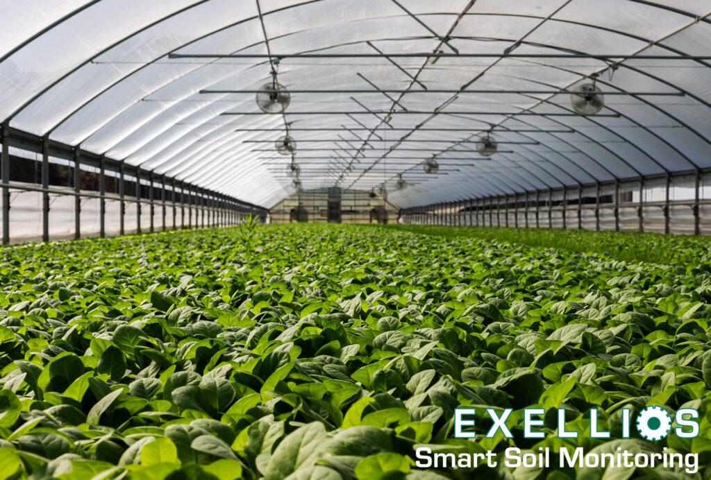 Smart Soil Monitoring exellios suelos mexico